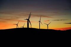 Windkraftanlagebauernhof bei Sonnenuntergang Stockfoto
