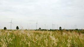 Windkraftanlagefeld und -wiese stock footage