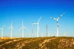 Windkraftanlagen am Ackerland im Sommer Stockfotografie
