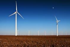 Windkraftanlagen auf einem Baumwollgebiet Stockfoto