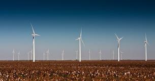 Windkraftanlagen auf einem Baumwollgebiet Stockbild