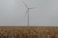 Windkraftanlagen auf einem Mais-Gebiet Lizenzfreie Stockfotos
