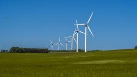 6 Windkraftanlagen auf einem Weizenfeld im Juni Lizenzfreies Stockbild