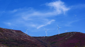 Windkraftanlagen auf Lavendel-Hügeln Stockbild