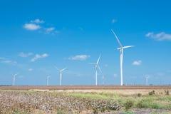 Windkraftanlagen bewirtschaften auf Baumwollfeld am Corpus Christi, Texas, USA Lizenzfreie Stockbilder