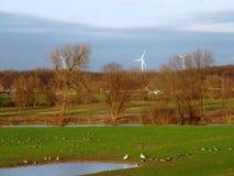 Windkraftanlagen in der grünen Umwelt Stockfotografie