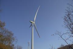 Windkraftanlagen für alternative Energieerzeugung und Klimaerhaltung Jahrhundert Apponale Glockenturm (Torre Apponale) und angren stockbild