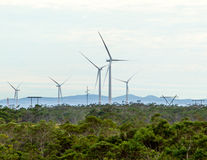 Windkraftanlagen mit Wolken im Hintergrund und Bäumen im Vordergrund Stockfoto