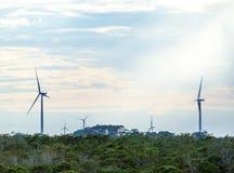 Windkraftanlagen mit Wolken im Hintergrund und Bäumen im Vordergrund Lizenzfreie Stockfotos