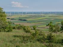 Windkraftanlagen und Rapssamenfelder 1 Lizenzfreies Stockfoto
