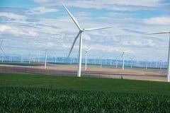 Windkraftanlagen und Weizenfelder in Ost-Oregon Stockbild