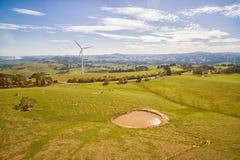 Windlandbouwbedrijf in Australië Royalty-vrije Stock Fotografie