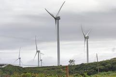 Windlandbouwbedrijf op het Hawaiiaanse Platteland stock fotografie