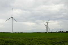 Windlandbouwbedrijf in Prins Edward Eilanden Royalty-vrije Stock Foto