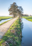 A windless autumn day at a narrow river Stock Photography
