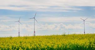 Windmühle. Stockfotos