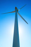 Windmühle Lizenzfreie Stockbilder