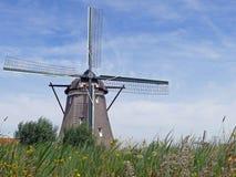Windmühle auf dem Rotte-Fluss im Zuidplaspolder stockfotos