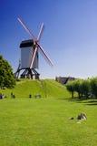 Windmühle, Brügge Lizenzfreie Stockfotografie