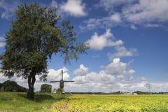 Windmühle das Oostmolen Lizenzfreie Stockbilder