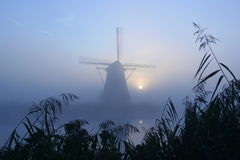 Windmühle an einem nebelhaften Morgen Stockbilder