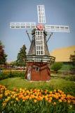 Windmühle an einem Tulpengarten Lizenzfreies Stockfoto