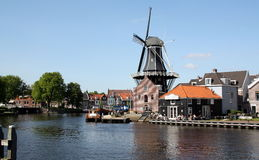 Windmühle in Haarlem Stockfoto