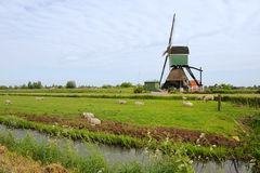 Windmühle in Holland Stockbild