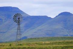 Windmühle im Karoo Stockbilder