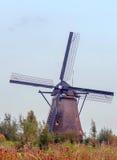 Windmühle in Kinderdijk in der Vertikale Stockfoto