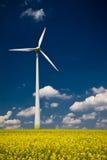 Windmühle mit Raps Lizenzfreie Stockfotos