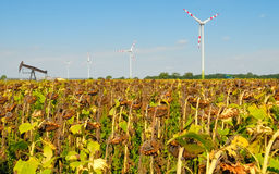 Windmühle no.3 Lizenzfreie Stockfotografie