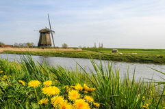 Windmühle steht auf einer Wiese nahe einem Kanal von den Niederlanden Lizenzfreie Stockbilder