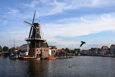 Windmühle und ein Vogel Lizenzfreie Stockfotografie