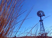 Windmühle und Gras Stockbild