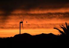 Windmühle und Schläger bei Sonnenuntergang stockfotografie