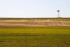 Windmühle und Winterweizen lizenzfreie stockbilder