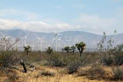 windmühlen Lizenzfreie Stockfotos