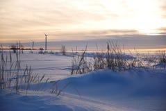 Windmühlen am Abend Stockfoto