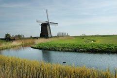 Windmühlen auf dem Gebiet Stockbilder