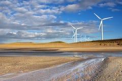 Windmühlen auf dem Maasvlakte Stockbild
