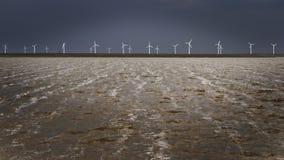 Windmühlen auf dem Ufer Stockbild