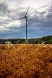 Windmühlen auf den Gebieten mit drastischen Regenwolken im backgro lizenzfreies stockbild
