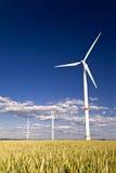 Windmühlen auf einem Gebiet des Roggens Lizenzfreie Stockbilder