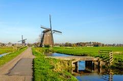 Windmühlen in einer ländlichen niederländischen Landschaft Stockfotografie