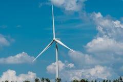 Windmühlen-Feld mit hellem Himmel und Wolke Lizenzfreie Stockbilder