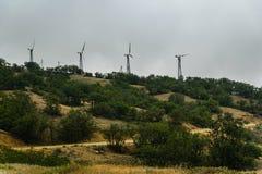 Windmühlen hinter den Bäumen im Nebel Stockfotografie