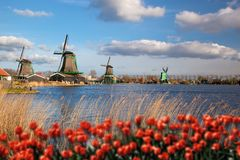 Windmühlen in Holland mit Kanal Stockfoto