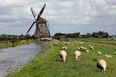 Windmühlen-Landschaft Lizenzfreies Stockfoto