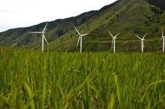 Windmühlen mit durchbrennengras stockfoto